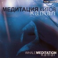 Медитация китов, Камал